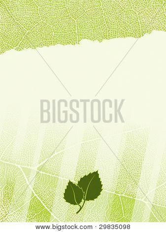 Plantilla con fondo de textura de hoja desiguales y campos de texto editables