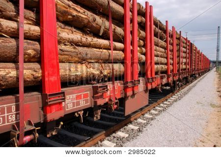 Biomass Transport