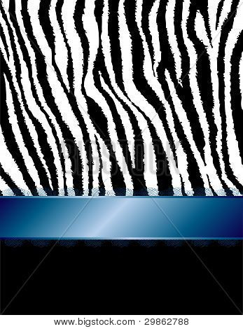 Zebra Stripes & Blue Filigree Ribbon