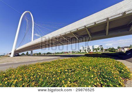 Calatrava Bridge in Reggio Emilia, Italy