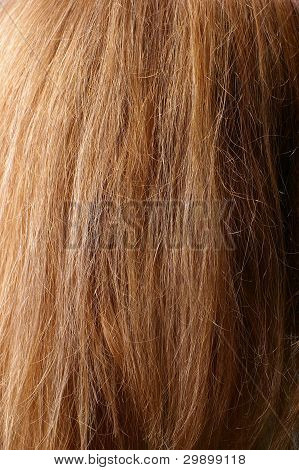 dark chestnut hair