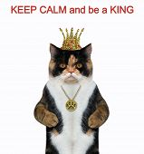 The Cat Is Wearing A Crown And A Medallion. Keep Calm And Be A King. White Background. Isolated. poster