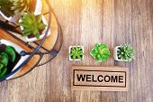 Warm Welcome Sign For Business Concept. Wooden Welcome Sign On Table Decorate With Little Cactus And poster