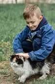 A Boy In A Denim Jacket Plays With A Fluffy Cat In The Park poster