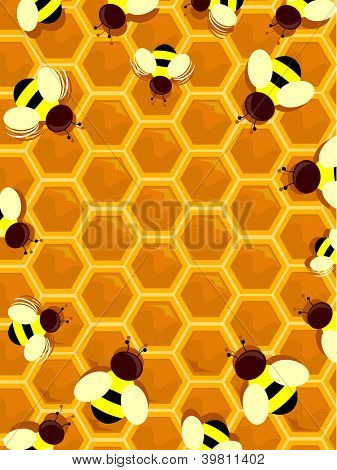 Illustration of a Beehive Frame with Honey Bees