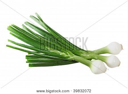 Cebollitas Onion