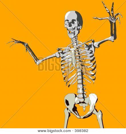 Bone 108