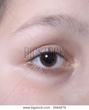 Eye  Close Up Anatomy