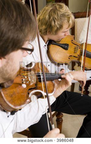 professioneller Musiker