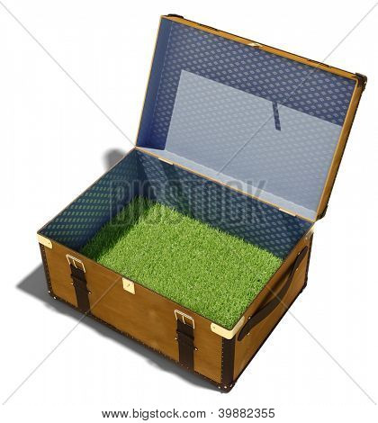 green grass meadow, as the contents of a vintage suitcase