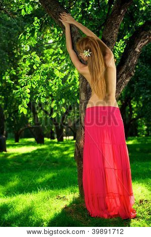 Young Beautiful Girl In The Apple Orchard