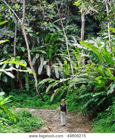 Young women on a jungle trail (Trinidad)
