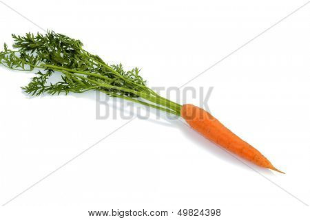 carrot on a stick. fresh fruit and vegetables are always healthy. symbolic photo for motivation.