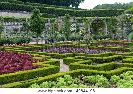 Gardens and Chateau de Villandry