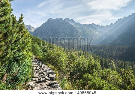 View Of High Tatra Mountains From Hiking Trail
