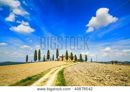 Tuscany, Farmland, Cypress Trees And White Road. Siena, Val D Orcia, Italy.