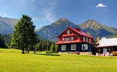 image of chalet  - Chalet in Mountain with blue sky at summer - JPG