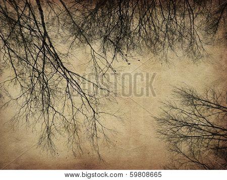 Grunge Bare Trees