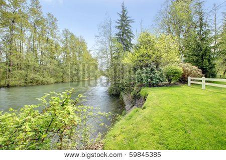 Picturesque Nature. River
