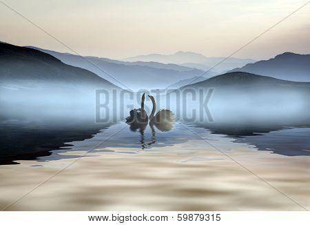 Beautiful Romantic Image Of Swans On Misty Lake With Mountains In Background
