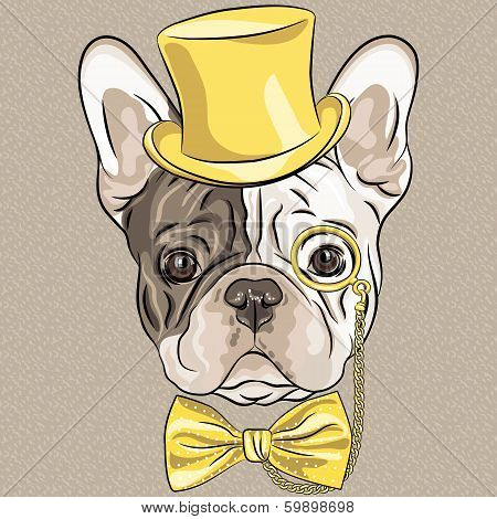 Vector Funny Cartoon Hipster French Bulldog Dog