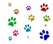 foto of paw-print  - Three colorfull paw prints isolated with white background - JPG