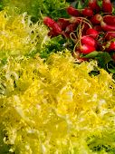 stock photo of endive  - Radishs and endive in a rural market - JPG