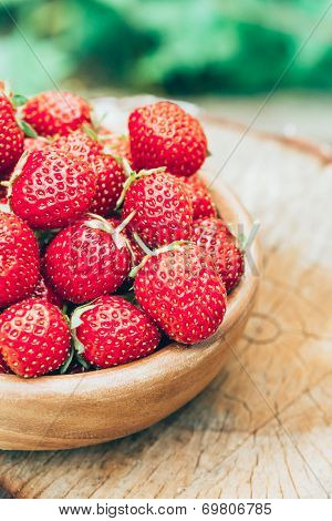 Strawberry. Strawberries. Organic Berries