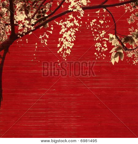 White And Black Blossom On Slatted Background