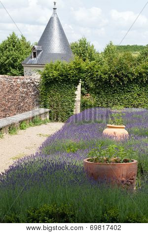 Subtle sophisticated and full taste garden and chateau La Chatonniere near Villandry. Loire Valley