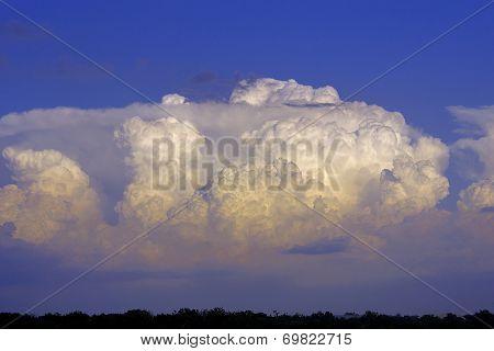 Large Cumulonimbus Thunderstorm