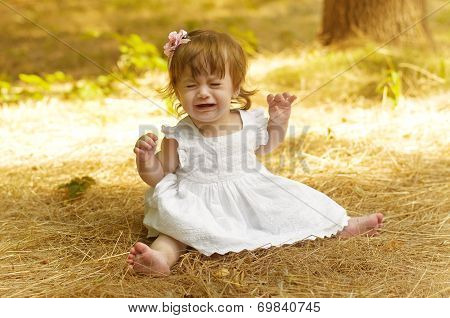 Beautiful dissatisfied baby girl on a field in the sunlight