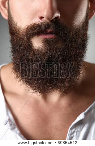 Part of a mans face with  beard