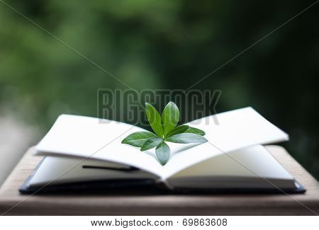 Book Or Notebook With Leaves On Neture Background