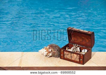 Treasure Chest Pool Snail