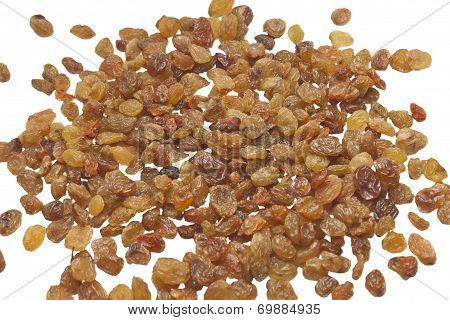 sultana raisins isolated on white