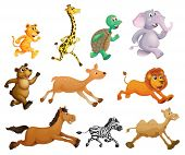 pic of stuffed animals  - Illustration of many animals running - JPG