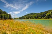 picture of panther  - View of wildflowers and lake at Panther Creek State Park - JPG