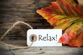 stock photo of fall decorations  - A Fall Label on which stands Relax Autumn Background - JPG