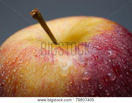 Apple Macro Detail