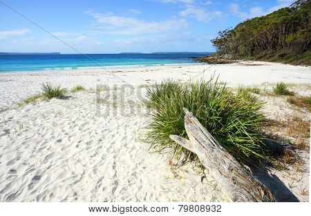 Unspoilt Natural Beach Greenfields Jervis Bay