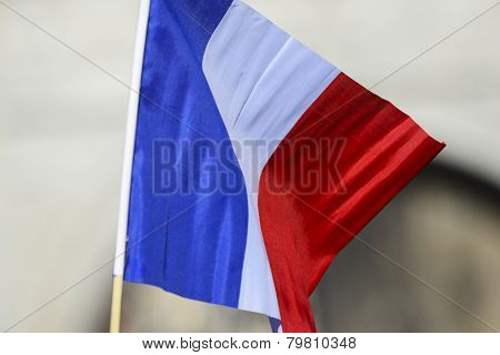 Tricolour held aloft