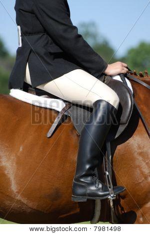 Horse and Rider, Close-up
