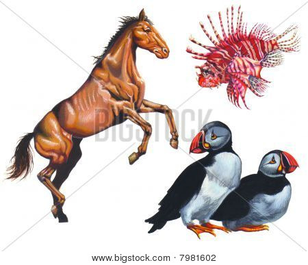 Realistic painting about a horse, a lion fish and two birds