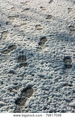 Foots in snow