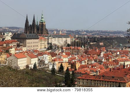 View Of St. Vitus Cathedral From Penrin Hill