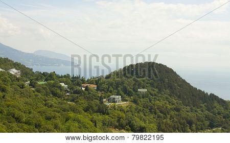 Crimea, Oleandra