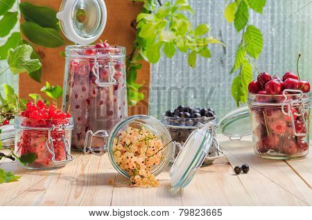 White Black Red Currants Gooseberries Cherries Jars Preparations