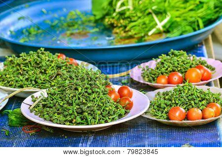 Green Fresh Salae With Tomato
