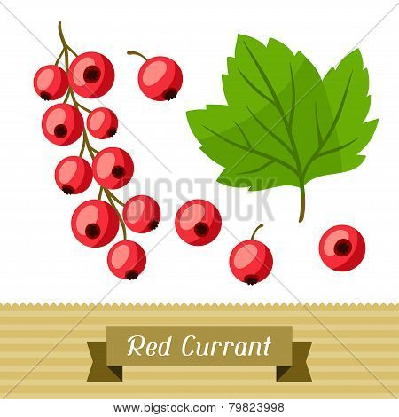 Set of various stylized red currants.